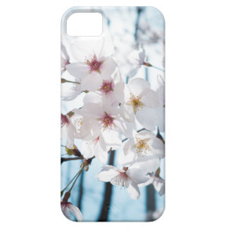 Asia Japanese Cherry Blossom Case For The iPhone 5
