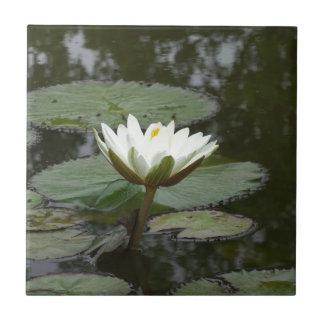 Asia Lotus Flower Ceramic Tile