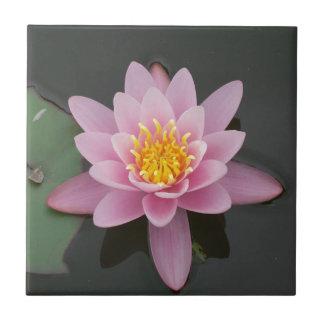 Asia Lotus Flower Tile