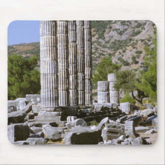 Asia, Middle East, Turkey, Ephesus. Temple of Mouse Pad