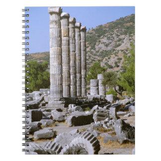 Asia, Middle East, Turkey, Ephesus. Temple of Notebook