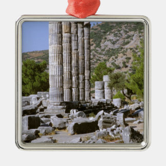 Asia, Middle East, Turkey, Ephesus. Temple of Silver-Colored Square Decoration