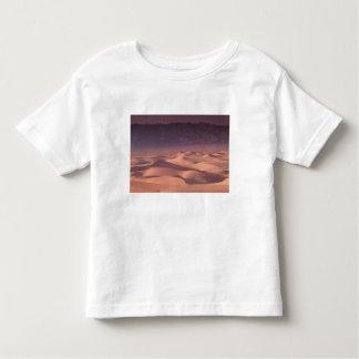 Asia, Mongolia, Gobi Desert, Gobi Gurvansaikhan Toddler T-Shirt