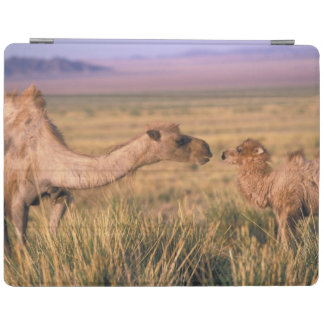Asia, Mongolia, Gobi Desert, Great Gobi iPad Cover