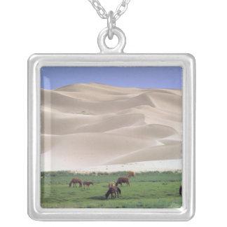 Asia, Mongolia, Gobi Desert. Wild horses. Silver Plated Necklace