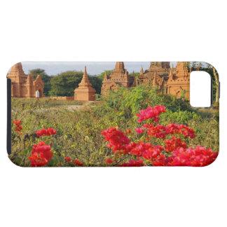 Asia, Myanmar (Burma), Bagan (Pagan). A Bagan iPhone 5 Cover