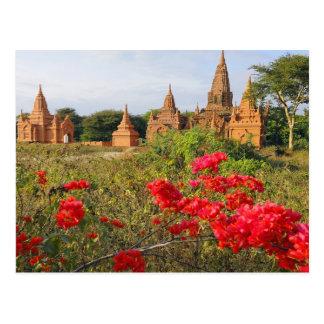 Asia, Myanmar (Burma), Bagan (Pagan). A Bagan Postcard