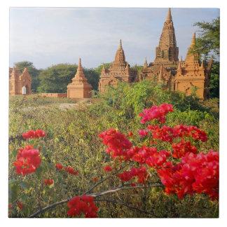 Asia, Myanmar (Burma), Bagan (Pagan). A Bagan Tile
