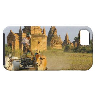 Asia, Myanmar (Burma), Bagan (Pagan). A cart is iPhone 5 Cases