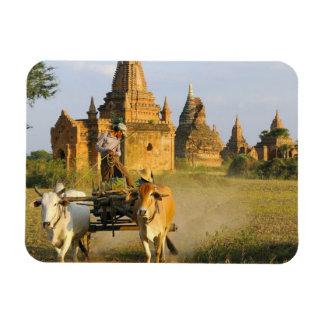 Asia, Myanmar (Burma), Bagan (Pagan). A cart is Magnet