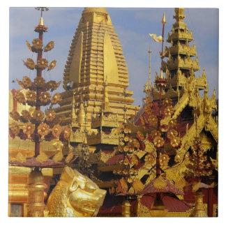 Asia, Myanmar (Burma), Bagan (Pagan). The Shwe 3 Tile