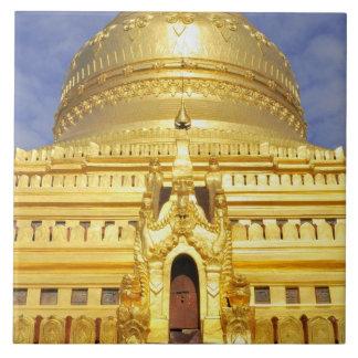Asia, Myanmar (Burma), Bagan (Pagan). The Shwe Tile