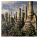 Asia, Myanmar, Inle Lake. Ancient ruins of Large Square Tile