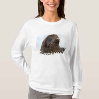 Asia, Russia, Russian Far East, Kamchatkan T-Shirt