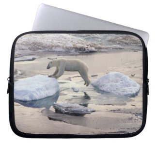 Asia, Russia, Siberian Arctic. Polar bear Laptop Sleeve