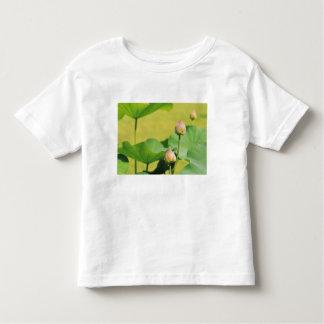 Asia, Thailand, Bangkok. Grand Palace, lotus Toddler T-Shirt