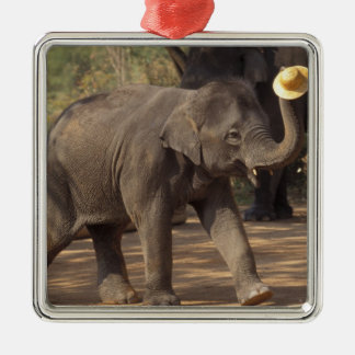 Asia, Thailand, Lampang Bowing with hat - Thai Christmas Ornament