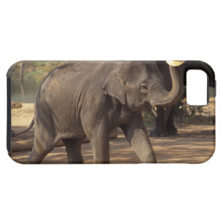 Asia, Thailand, Lampang Bowing with hat - Thai iPhone 5 Cover