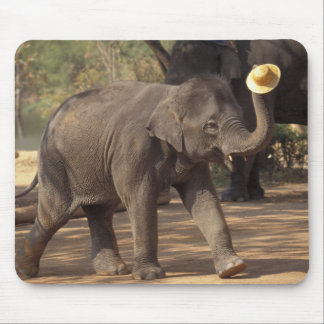 Asia, Thailand, Lampang Bowing with hat - Thai Mouse Mat