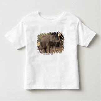 Asia, Thailand, Lampang Bowing with hat - Thai Toddler T-Shirt