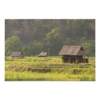 Asia Thailand Mae Hong Son Rice huts in the Photo Art