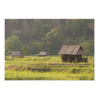 Asia, Thailand, Mae Hong Son, Rice huts in the Photographic Print