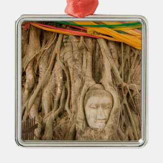 Asia, Thailand, Siam, Buddha in tree ruts at Silver-Colored Square Decoration