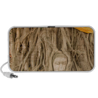 Asia Thailand Siam Buddha in tree ruts at Notebook Speaker