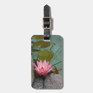 Asia, Vietnam. Water lily in a temple pond Luggage Tag