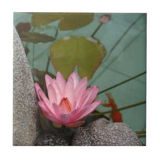 Asia, Vietnam. Water lily in a temple pond Tile
