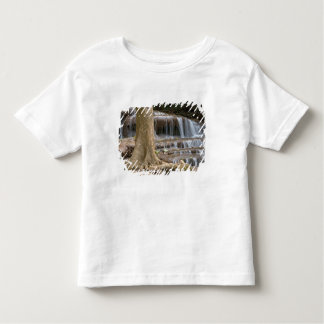 Asia, Waterfall on the border between Thailand Toddler T-Shirt