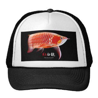 Asian Arowana 優良製品 トラッカー帽子