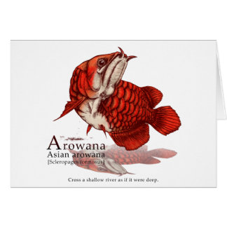 Asian arowana - flare カード