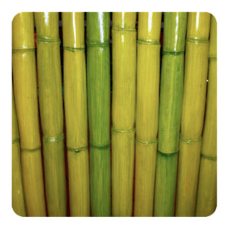 "Asian Bamboo Stalks Japanese Sushi Dinner Party 5.25"" Square Invitation Card"