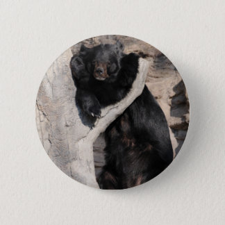 Asian Black Bear 6 Cm Round Badge