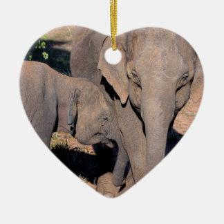 Asian elephant calf feeding from mother Sri Lanka Christmas Ornament