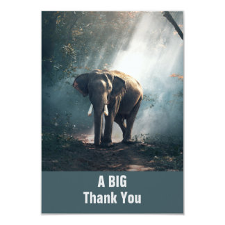 Asian Elephant in a Sunlit Forest Thank You Card