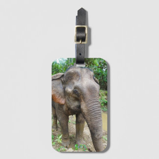Asian Elephant Luggage Tag