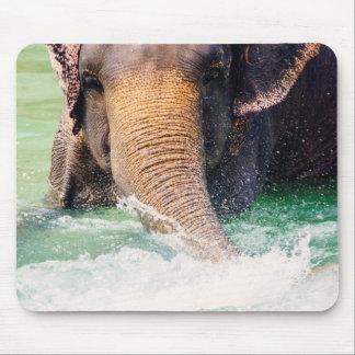 Asian Elephant Splashing In Water, Animal Mousepads
