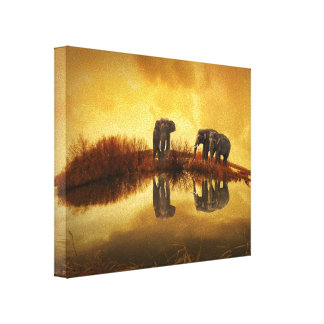 Asian Elephants in Thailand under a glowing sunset Canvas Print