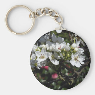 Asian Pear Blossoms Basic Round Button Keychain