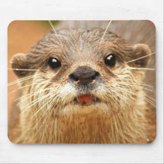 Asian Small Clawed Otter Mousepads