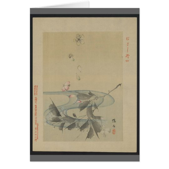 Asian Stream Card