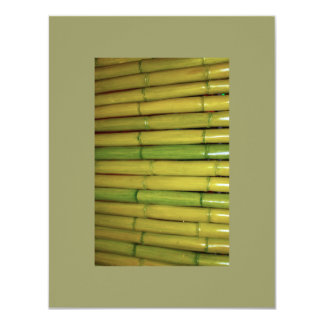 Asian Zen Green Bamboo Stalks Botanical Photo Card