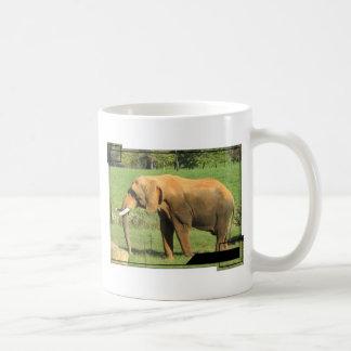 Asiatic Elephant  Coffee Cup Basic White Mug