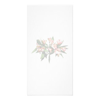 Asiatic Lilies and Leaves Photo Card