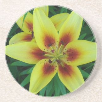 Asiatic Lily Coaster