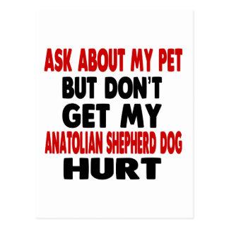 Ask About my Anatolian Shepherd dog Postcard