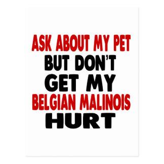 Ask About my Belgian Malinois Postcard