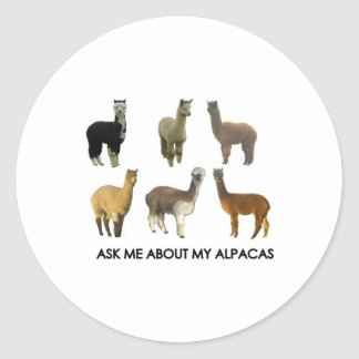 Ask me about my alpacas classic round sticker